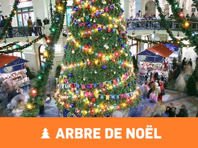 prestation-arbre-de-noel-animation-annecy