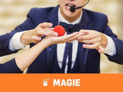 prestation-magie-albertville-up-animation